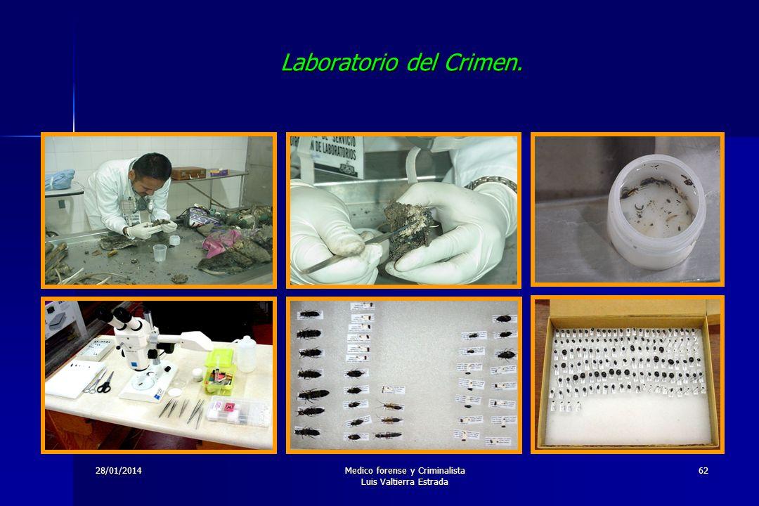 28/01/2014Medico forense y Criminalista Luis Valtierra Estrada 62 Laboratorio del Crimen.
