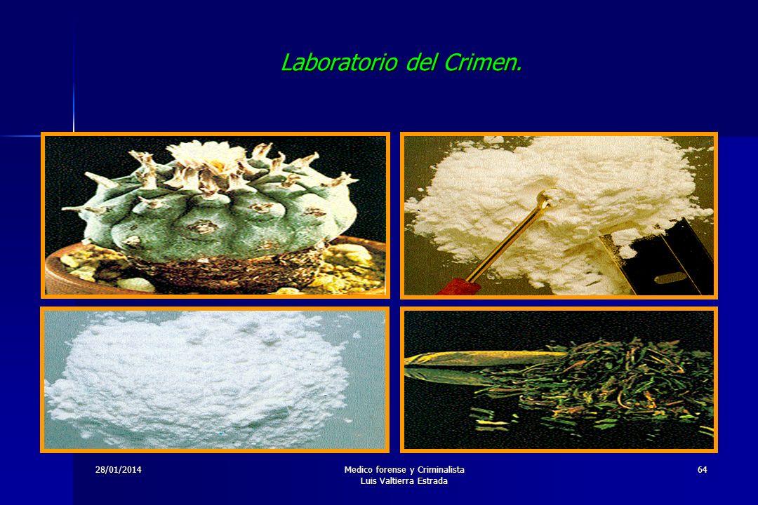 28/01/2014Medico forense y Criminalista Luis Valtierra Estrada 64 Laboratorio del Crimen.
