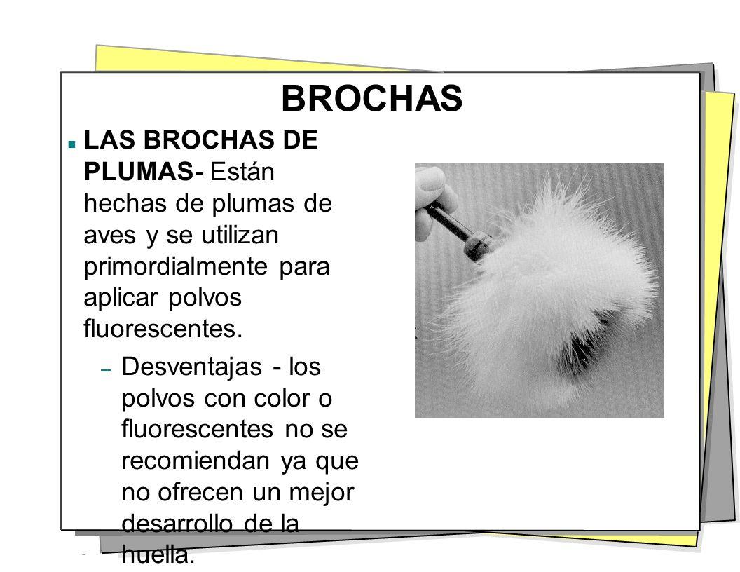 BROCHAS LAS BROCHAS DE PLUMAS- Están hechas de plumas de aves y se utilizan primordialmente para aplicar polvos fluorescentes. – Desventajas - los pol
