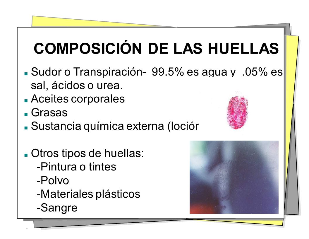 COMPOSICIÓN DE LAS HUELLAS Sudor o Transpiración- 99.5% es agua y.05% es sal, ácidos o urea. Aceites corporales Grasas Sustancia química externa (loci