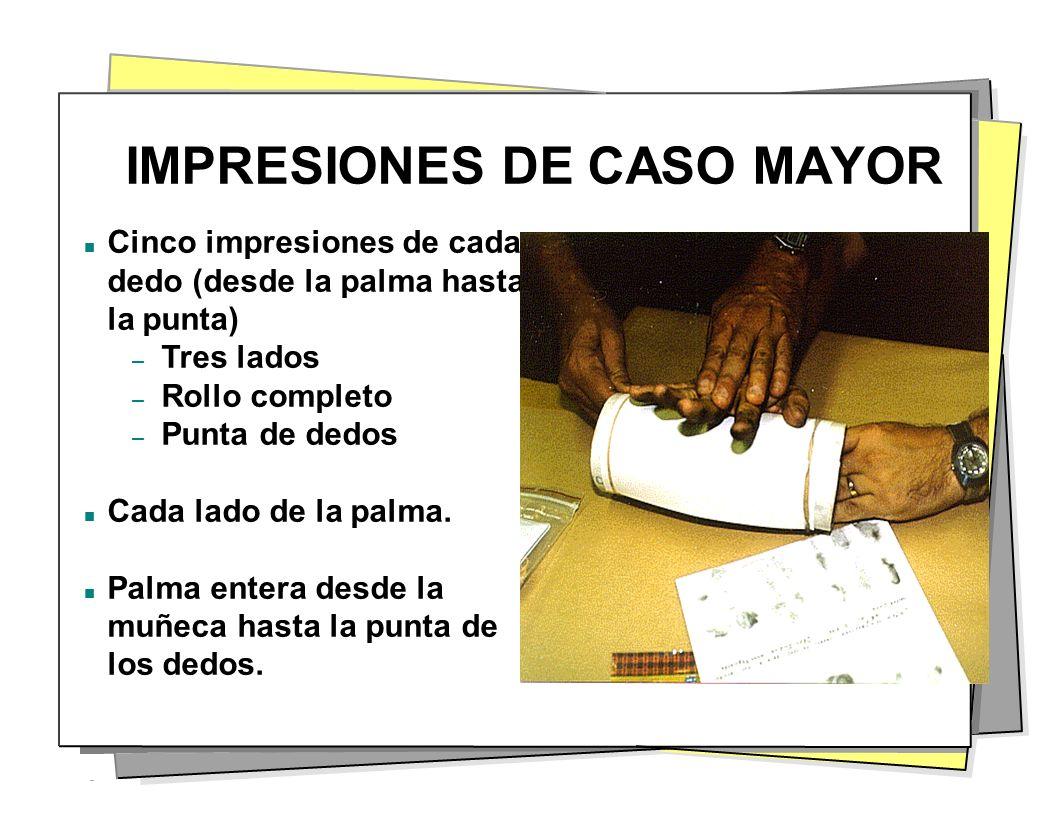 IMPRESIONES DE CASO MAYOR Cinco impresiones de cada dedo (desde la palma hasta la punta) – Tres lados – Rollo completo – Punta de dedos Cada lado de l
