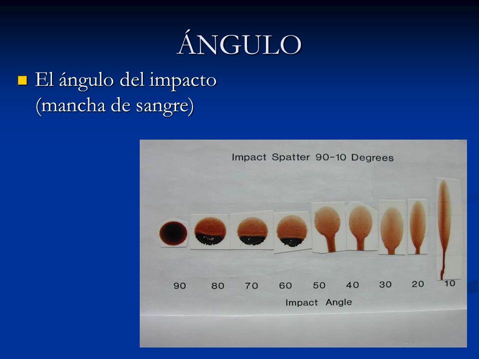 ÁNGULO El ángulo del impacto (mancha de sangre) El ángulo del impacto (mancha de sangre)