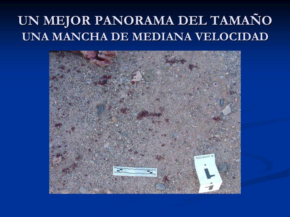 UN MEJOR PANORAMA DEL TAMAÑO UNA MANCHA DE MEDIANA VELOCIDAD