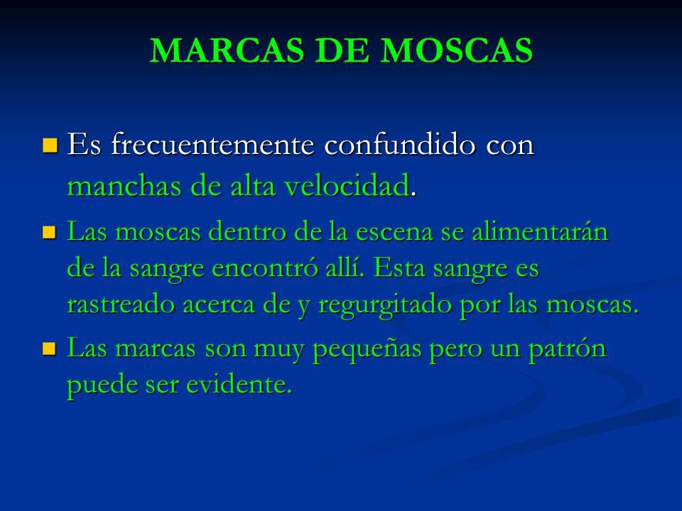 MARCAS DE MOSCAS Es frecuentemente confundido con manchas de alta velocidad. Es frecuentemente confundido con manchas de alta velocidad. Las moscas de