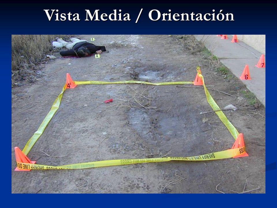 Vista Media / Orientación