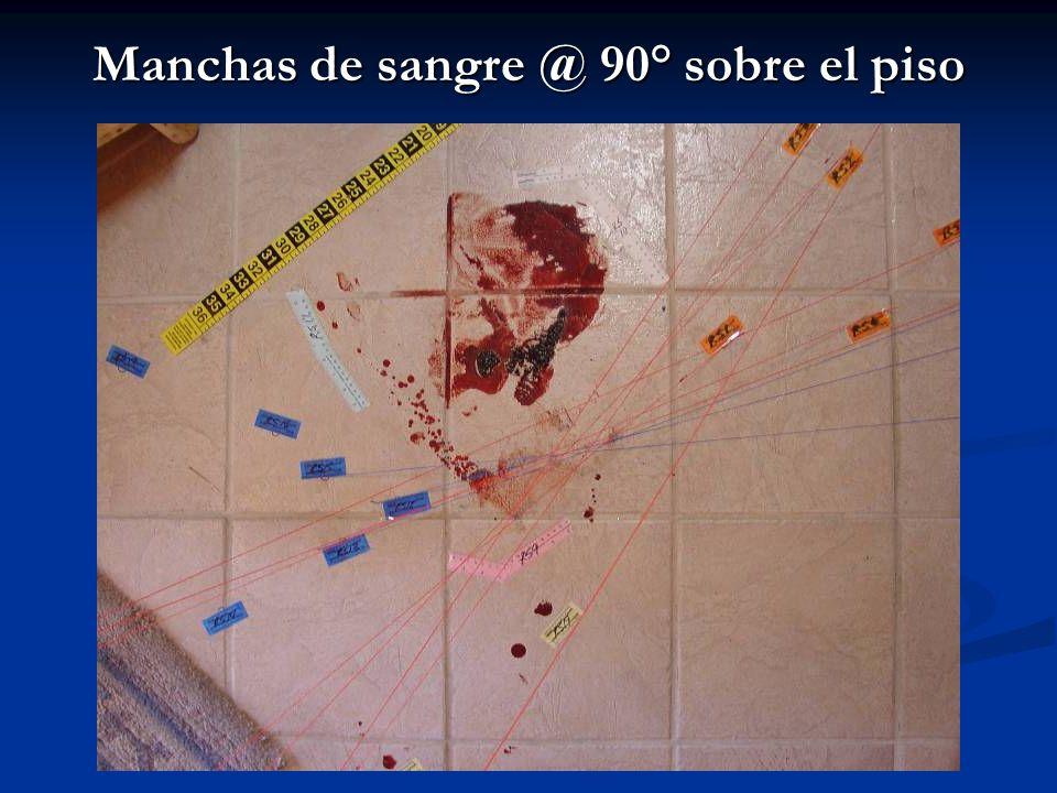Manchas de sangre @ 90° sobre el piso