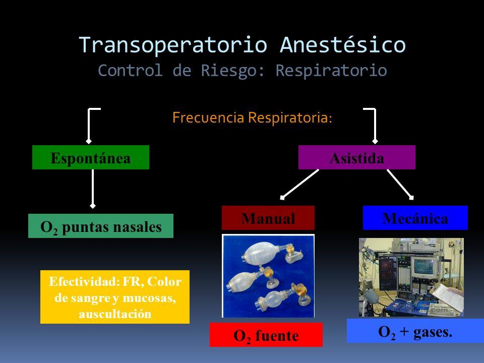 Transoperatorio Anestésico Control de Riesgo: Respiratorio Frecuencia Respiratoria: Espontánea O 2 puntas nasales Asistida ManualMecánica O 2 + gases.
