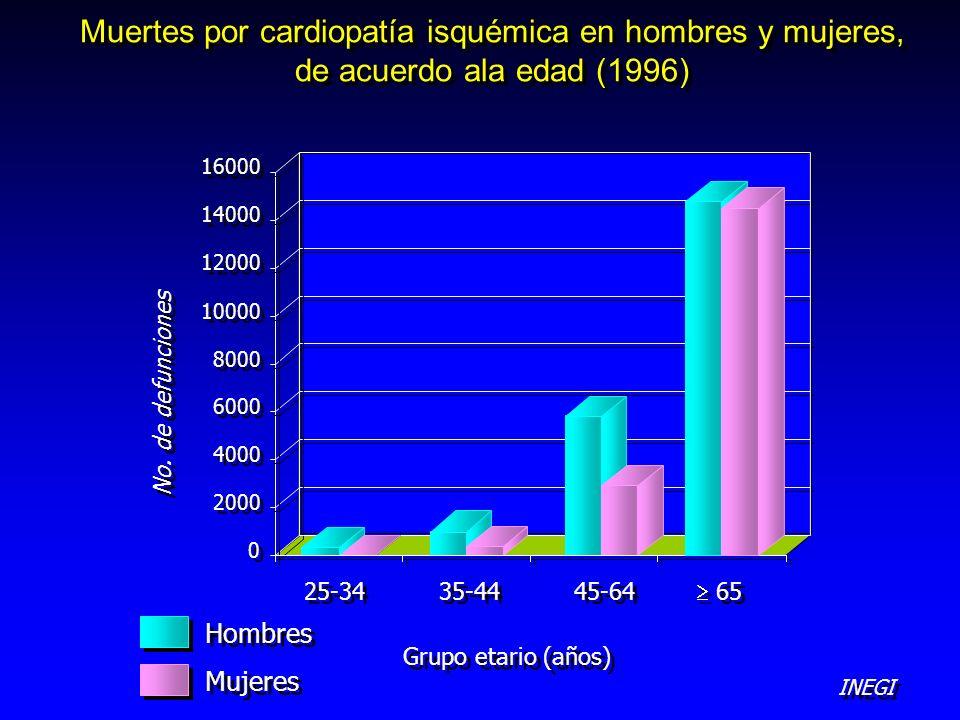 Muertes por cardiopatía isquémica en hombres y mujeres, de acuerdo ala edad (1996) 0 0 2000 4000 6000 8000 10000 12000 14000 16000 65 45-64 35-44 25-3