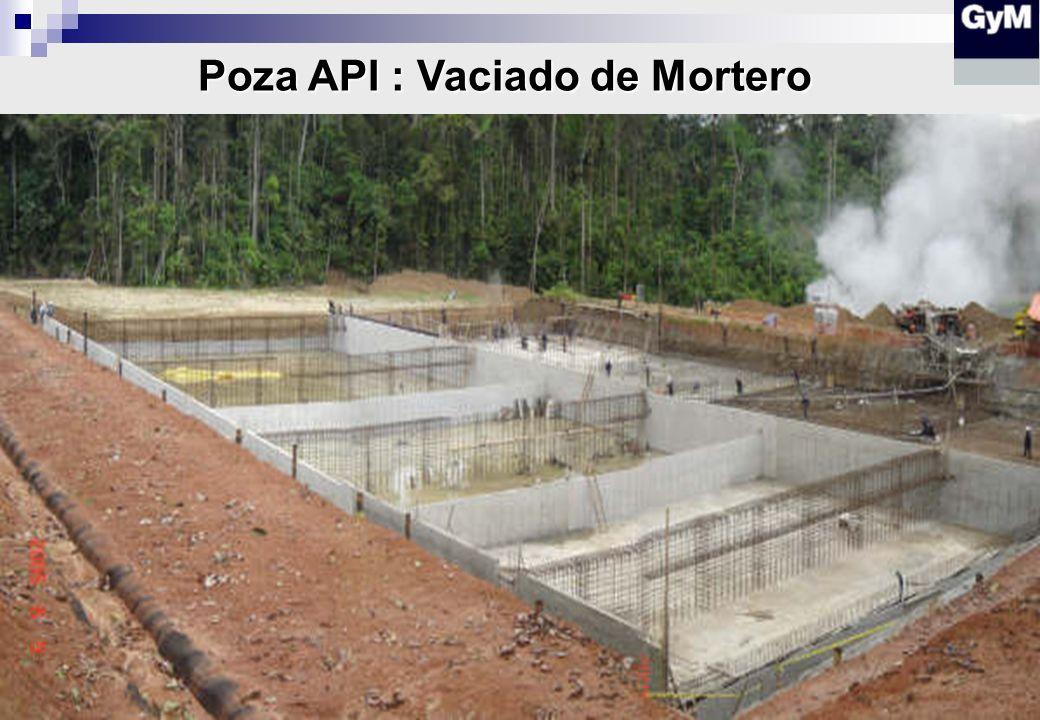 Poza API : Encofrado