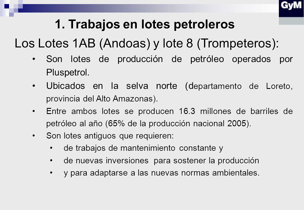 Los Lotes 1AB (Andoas) y lote 8 (Trompeteros): Son lotes de producción de petróleo operados por Pluspetrol.Son lotes de producción de petróleo operados por Pluspetrol.