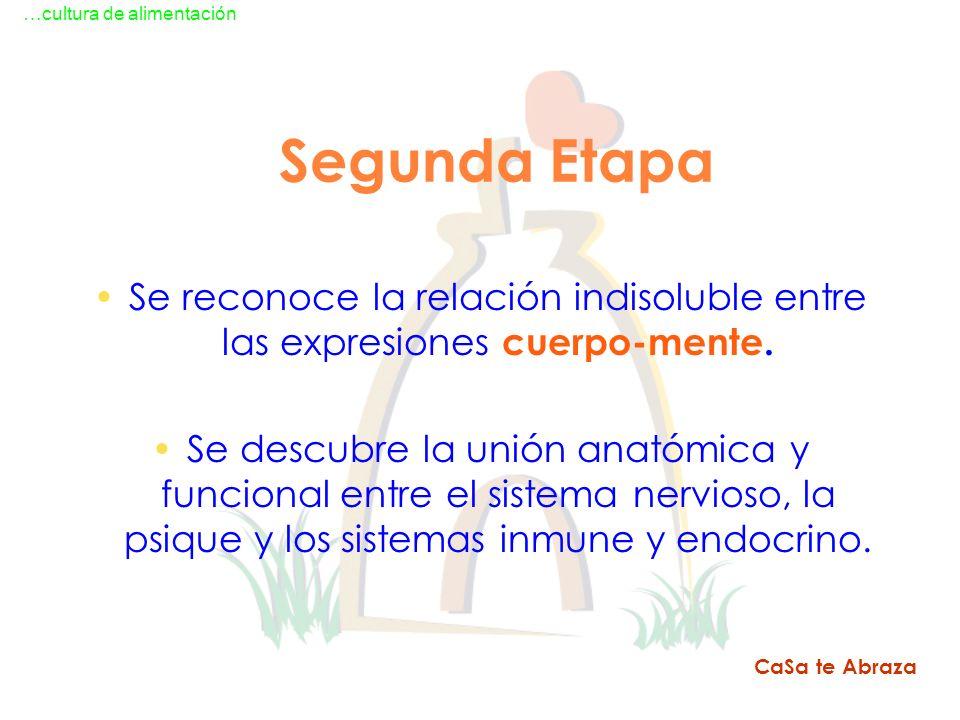 Segunda Etapa Se reconoce la relación indisoluble entre las expresiones cuerpo-mente. Se descubre la unión anatómica y funcional entre el sistema nerv