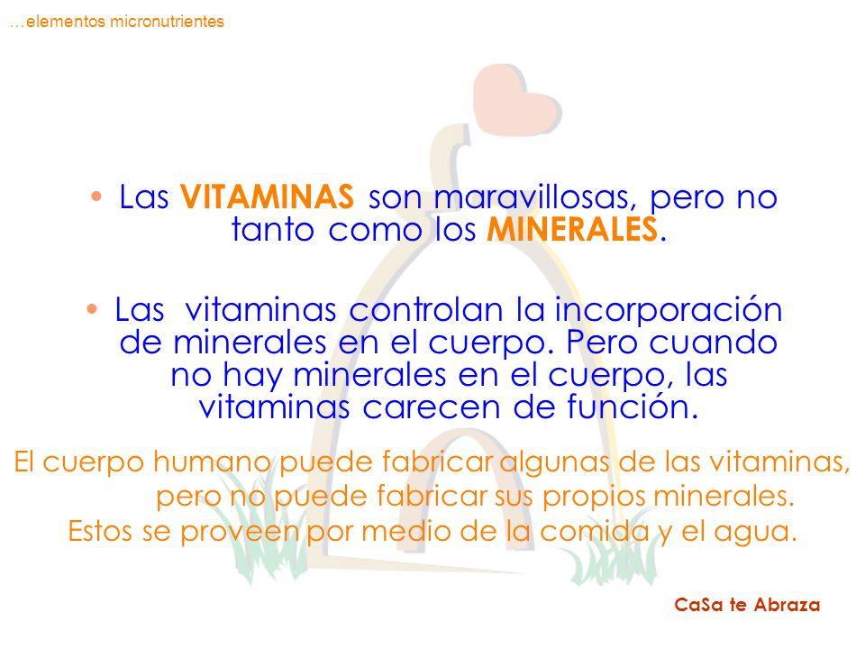 Las VITAMINAS son maravillosas, pero no tanto como los MINERALES. Las vitaminas controlan la incorporación de minerales en el cuerpo. Pero cuando no h