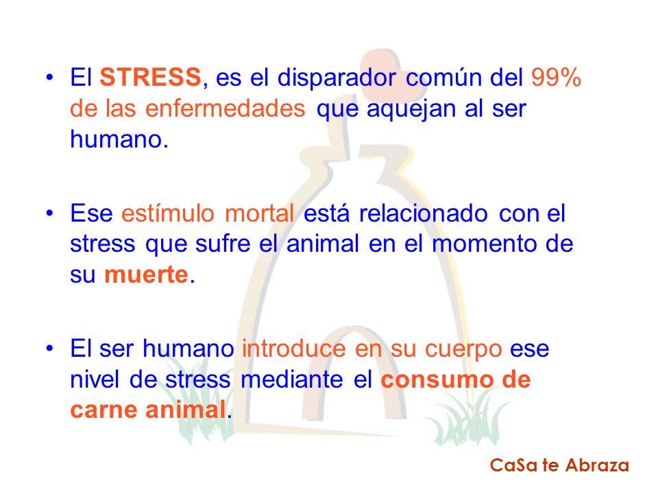 El STRESS, es el disparador común del 99% de las enfermedades que aquejan al ser humano. Ese estímulo mortal está relacionado con el stress que sufre