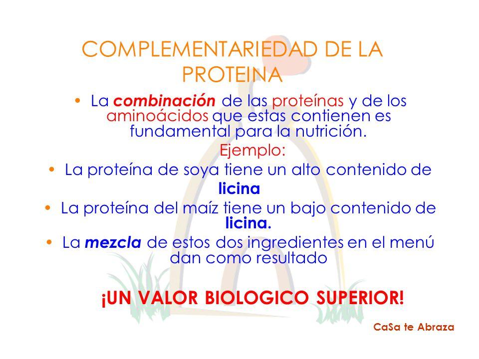 COMPLEMENTARIEDAD DE LA PROTEINA La combinación de las proteínas y de los aminoácidos que estas contienen es fundamental para la nutrición. Ejemplo: L