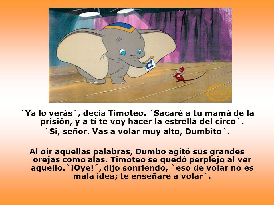 Esa misma noche, en los terrenos que rodeaban el circo, y con el maestro Timoteo, Dumbo tomó su primera lección de vuelo.
