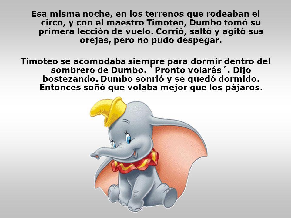 Esa misma noche, en los terrenos que rodeaban el circo, y con el maestro Timoteo, Dumbo tomó su primera lección de vuelo. Corrió, saltó y agitó sus or