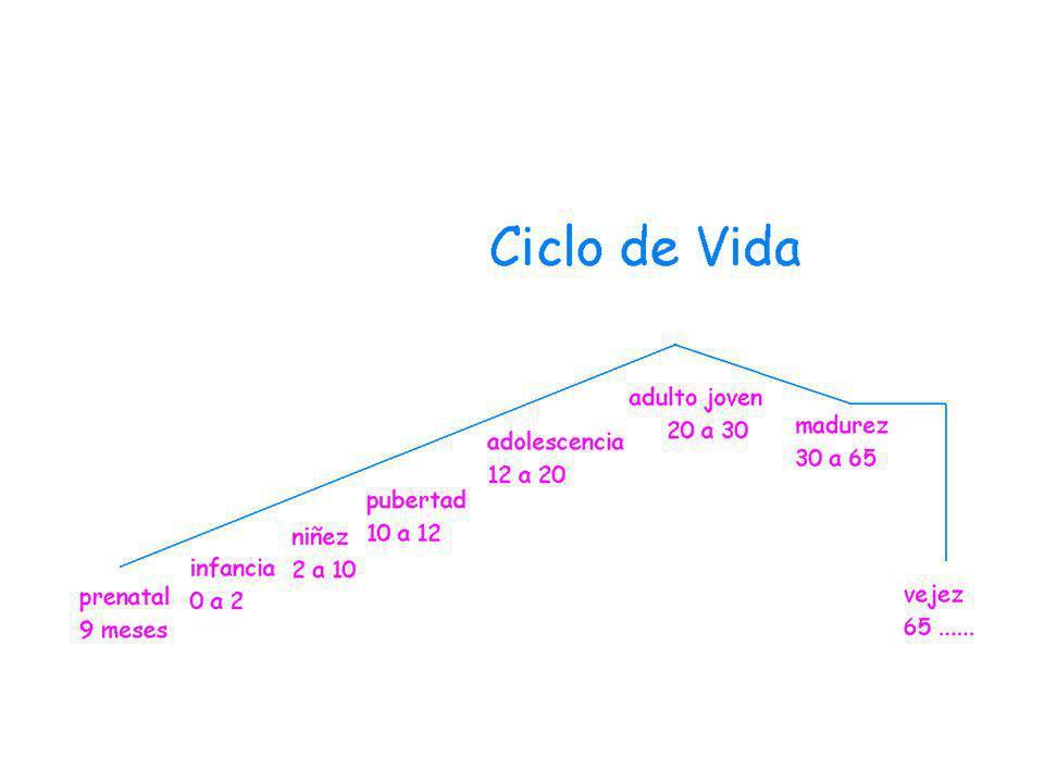 @dolescenci@ Monitores Computadora en área común Cybersex Chat - Messenger Aprendan y compartan -
