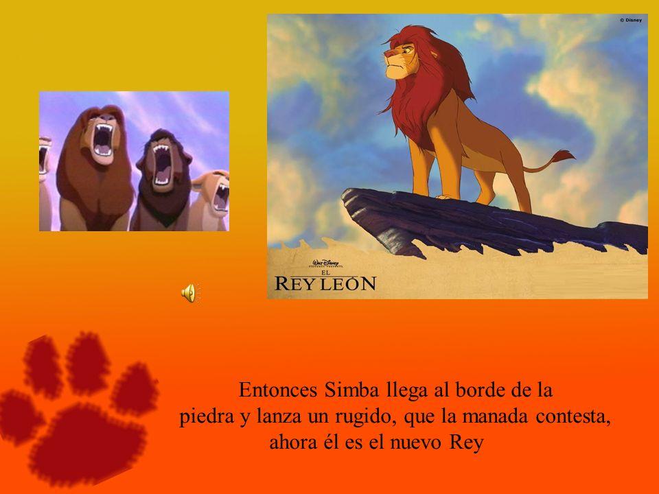 Entonces Simba llega al borde de la piedra y lanza un rugido, que la manada contesta, ahora él es el nuevo Rey