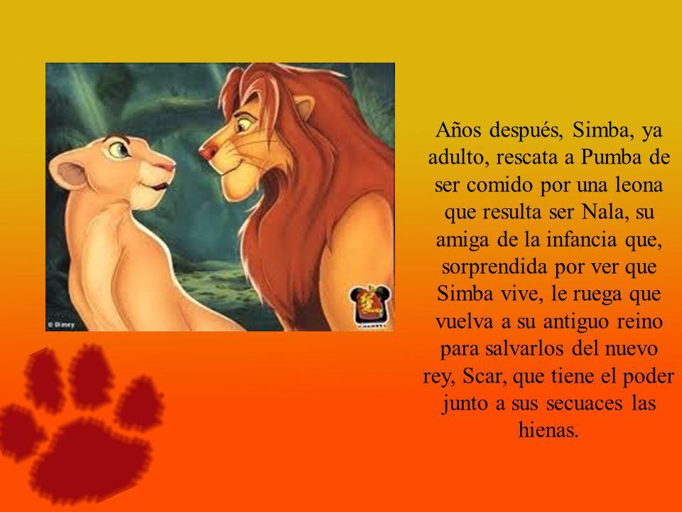 Años después, Simba, ya adulto, rescata a Pumba de ser comido por una leona que resulta ser Nala, su amiga de la infancia que, sorprendida por ver que