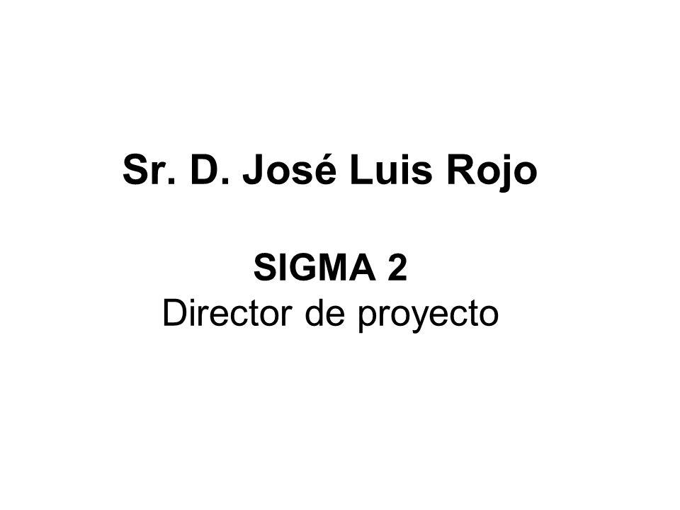 Sr. D. José Luis Rojo SIGMA 2 Director de proyecto