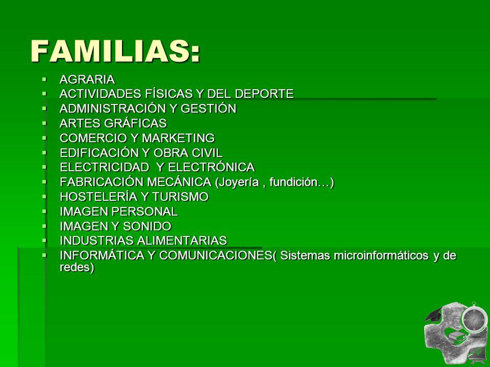 FAMILIAS: AGRARIA AGRARIA ACTIVIDADES FÍSICAS Y DEL DEPORTE ACTIVIDADES FÍSICAS Y DEL DEPORTE ADMINISTRACIÓN Y GESTIÓN ADMINISTRACIÓN Y GESTIÓN ARTES GRÁFICAS ARTES GRÁFICAS COMERCIO Y MARKETING COMERCIO Y MARKETING EDIFICACIÓN Y OBRA CIVIL EDIFICACIÓN Y OBRA CIVIL ELECTRICIDAD Y ELECTRÓNICA ELECTRICIDAD Y ELECTRÓNICA FABRICACIÓN MECÁNICA (Joyería, fundición…) FABRICACIÓN MECÁNICA (Joyería, fundición…) HOSTELERÍA Y TURISMO HOSTELERÍA Y TURISMO IMAGEN PERSONAL IMAGEN PERSONAL IMAGEN Y SONIDO IMAGEN Y SONIDO INDUSTRIAS ALIMENTARIAS INDUSTRIAS ALIMENTARIAS INFORMÁTICA Y COMUNICACIONES( Sistemas microinformáticos y de redes) INFORMÁTICA Y COMUNICACIONES( Sistemas microinformáticos y de redes)