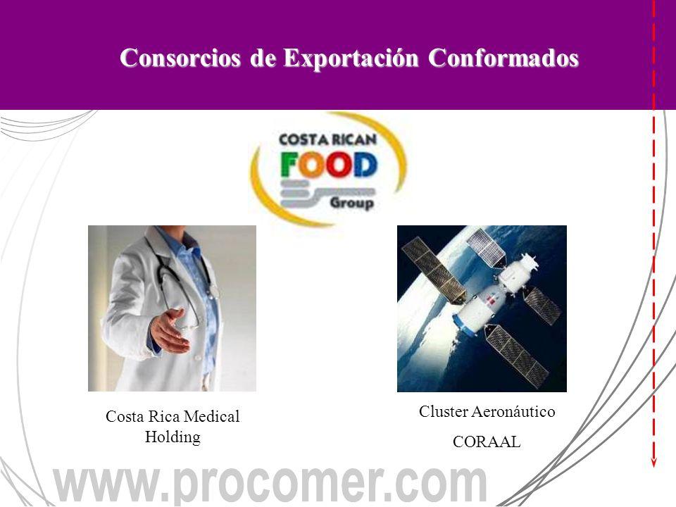 Costa Rica Medical Holding Cluster Aeronáutico CORAAL Consorcios de Exportación Conformados