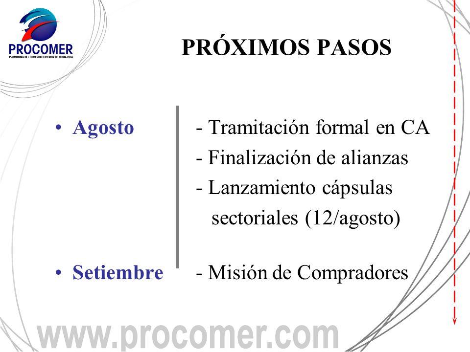 PRÓXIMOS PASOS Agosto- Tramitación formal en CA - Finalización de alianzas - Lanzamiento cápsulas sectoriales (12/agosto) Setiembre- Misión de Compradores