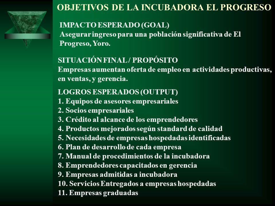 OBJETIVOS DE LA INCUBADORA EL PROGRESO IMPACTO ESPERADO (GOAL) Asegurar ingreso para una población significativa de El Progreso, Yoro. SITUACIÓN FINAL