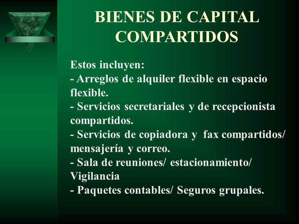 PRESIDENTE VICE-PRESIDENTE DE MERCADEO VICE-PRESIDENTE DE PRODUCCIÓN VICE-PRESIDENTE DE PERSONAL VICEPRESIDENTE DE FINANZAS ADMINISTRADOR vacante EQUIPO DE ADMISIONES EMPRESAS HOSPEDADAS ASESORIA EN SOLICITUDES DE FINANCIAMIENTO ASESORES VOLUNTARIOS UNIVERSIDAD ASESORES FACACH ESTUDIOS DE FACTIBILIDAD PLANES EMPRESARIALES COHEP FEDECAMARA ANMPIH FIDE REPRESENTACIÓN A NIVEL NACIONAL MESA DIRECTIVA
