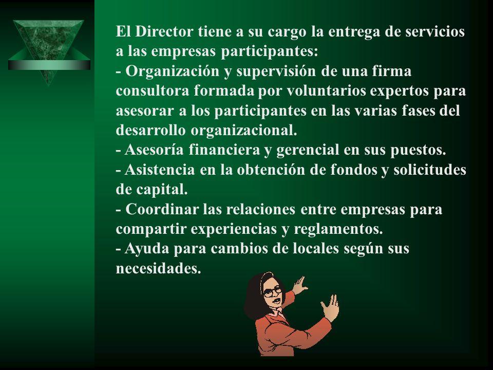 El Director tiene a su cargo la entrega de servicios a las empresas participantes: - Organización y supervisión de una firma consultora formada por vo