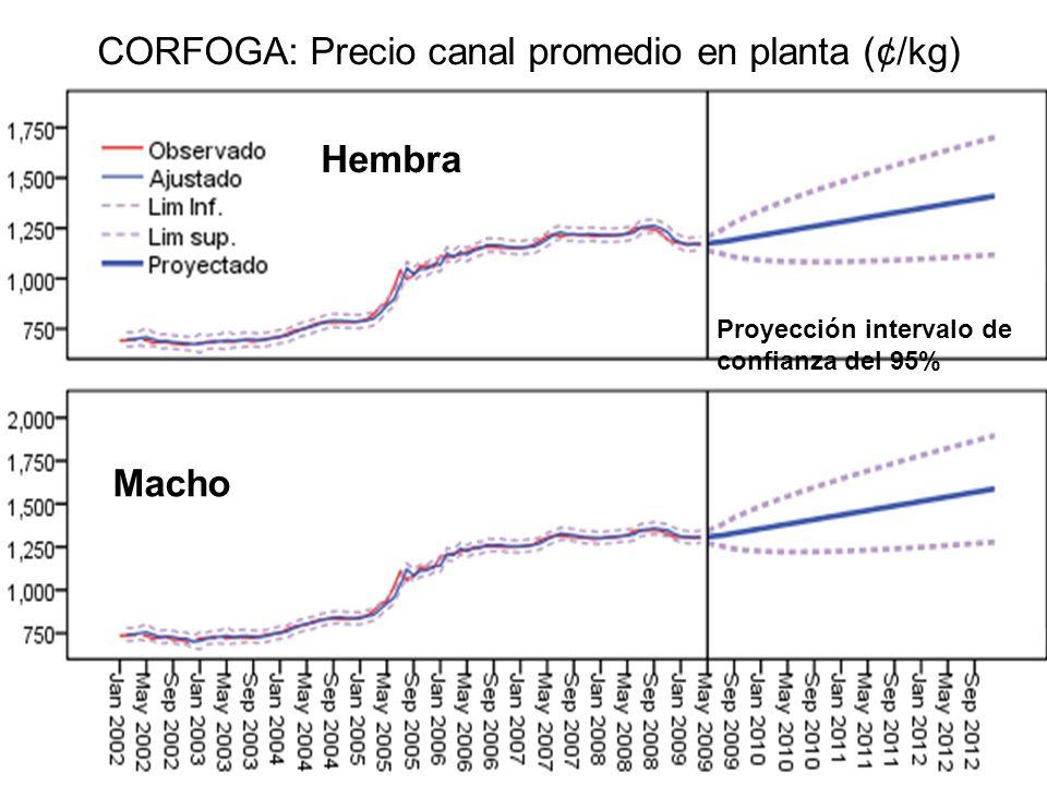 CORFOGA: Precio canal promedio en planta (¢/kg) Macho Hembra Proyección intervalo de confianza del 95%