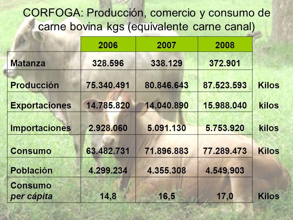 CORFOGA: Producción, comercio y consumo de carne bovina kgs (equivalente carne canal) 200620072008 Matanza328.596338.129372.901 Producción75.340.49180