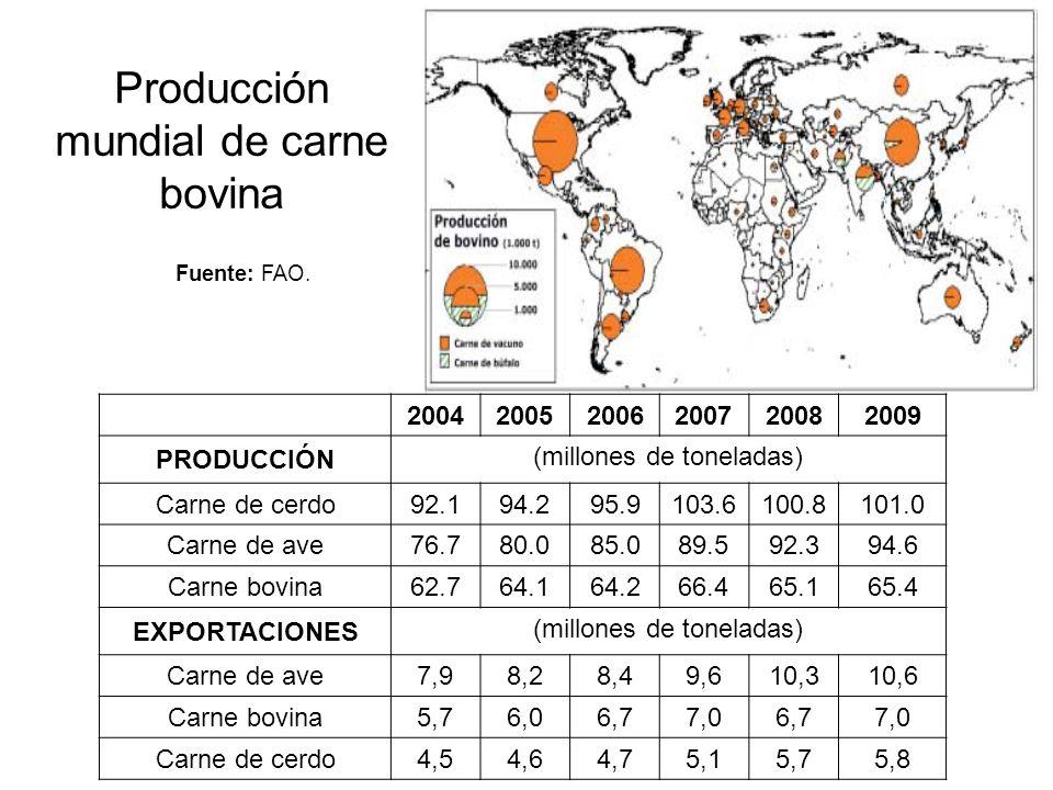 Producción mundial de carne bovina 2009 proyecta una leve recuperación: –matanza de ganado lechero por bajos precios de la leche –reducción en el precio de las materias primas –precios más competitivos a base de forrajes Comercio residual: 10.7% de la producción se comercializa a nivel internacional
