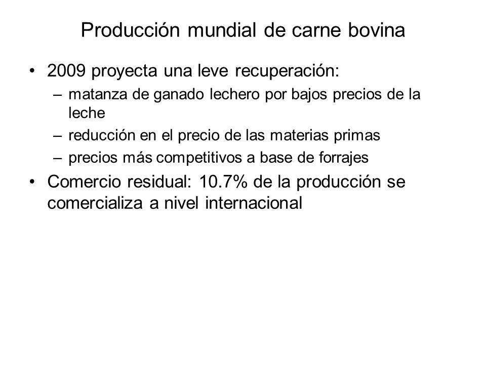 Producción mundial de carne bovina 2009 proyecta una leve recuperación: –matanza de ganado lechero por bajos precios de la leche –reducción en el prec