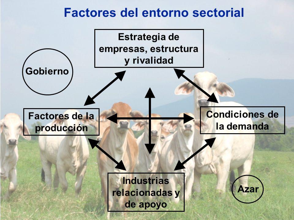 Factores del entorno sectorial Gobierno Azar Estrategia de empresas, estructura y rivalidad Condiciones de la demanda Factores de la producción Indust