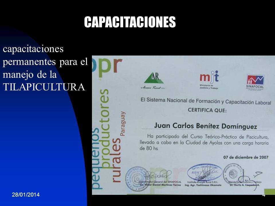 28/01/20144 CAPACITACIONES capacitaciones permanentes para el manejo de la TILAPICULTURA