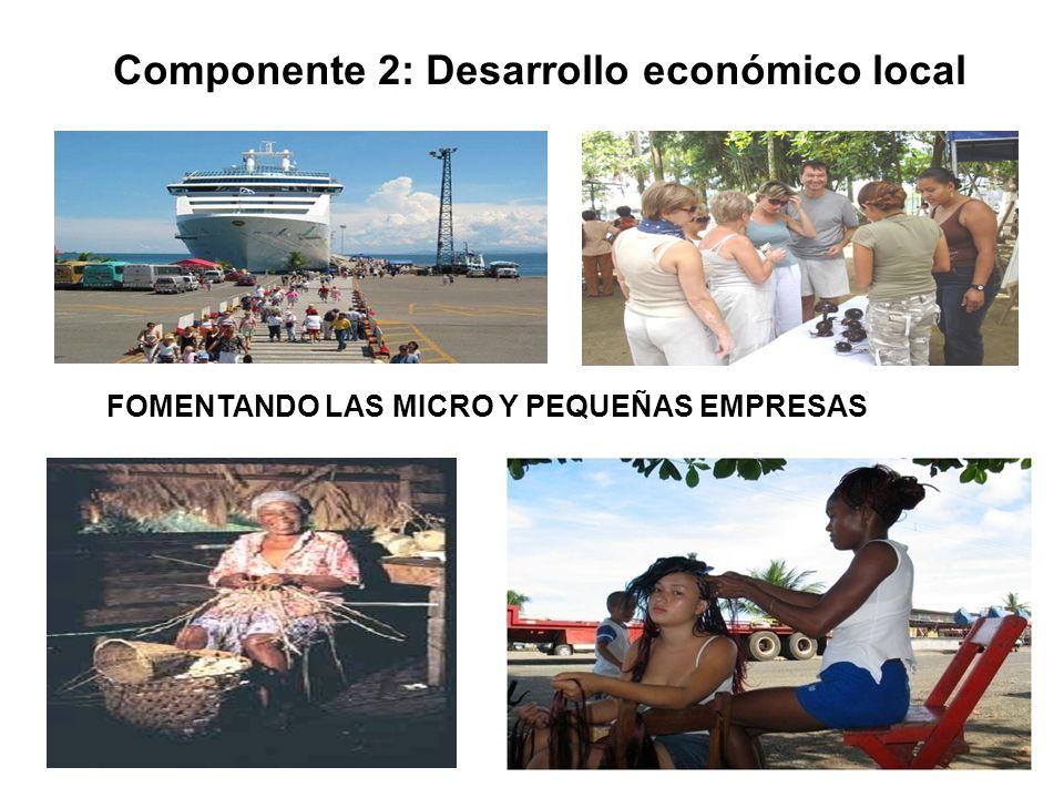 15 FOMENTANDO LAS MICRO Y PEQUEÑAS EMPRESAS Componente 2: Desarrollo económico local