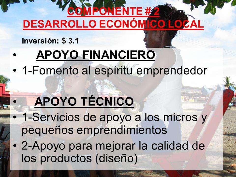 16 APOYO FINANCIERO 1-Fomento al espíritu emprendedor APOYO TÉCNICO 1-Servicios de apoyo a los micros y pequeños emprendimientos 2-Apoyo para mejorar