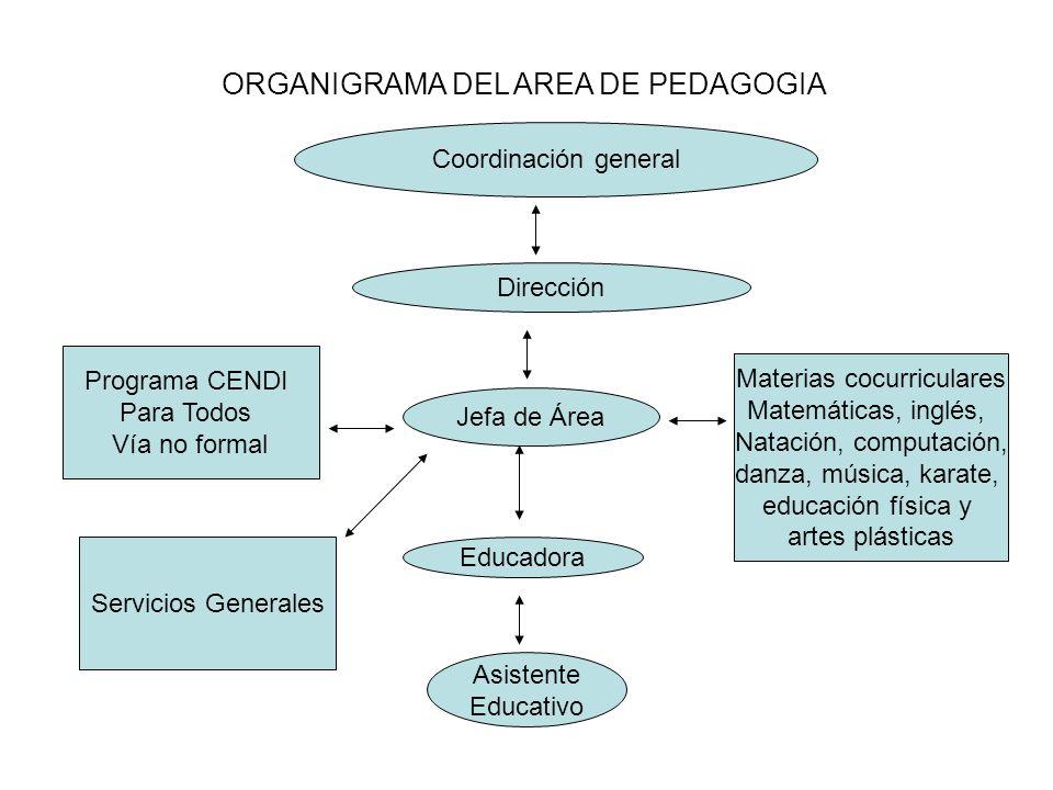 ORGANIGRAMA DEL AREA DE PEDAGOGIA Coordinación general Dirección Jefa de Área Educadora Asistente Educativo Materias cocurriculares Matemáticas, inglé