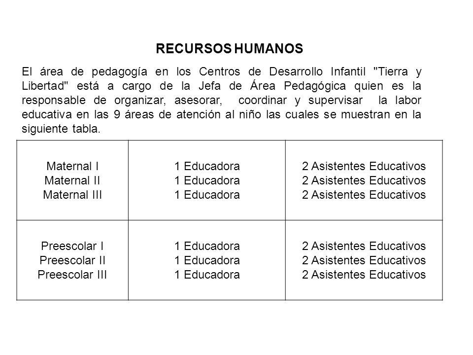 RECURSOS HUMANOS El área de pedagogía en los Centros de Desarrollo Infantil