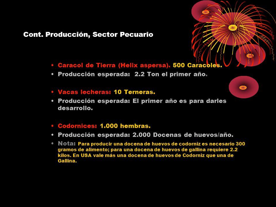 Cont. Producción, Sector Pecuario Caracol de Tierra (Helix aspersa). 500 Caracoles. Producción esperada: 2.2 Ton el primer año. Vacas lecheras: 10 Ter