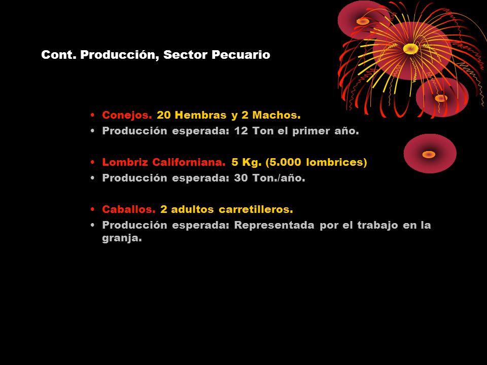 Cont. Producción, Sector Pecuario Conejos. 20 Hembras y 2 Machos. Producción esperada: 12 Ton el primer año. Lombriz Californiana. 5 Kg. (5.000 lombri