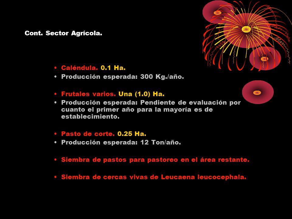 Cont. Sector Agrícola. Caléndula. 0.1 Ha. Producción esperada: 300 Kg./año. Frutales varios. Una (1.0) Ha. Producción esperada: Pendiente de evaluació