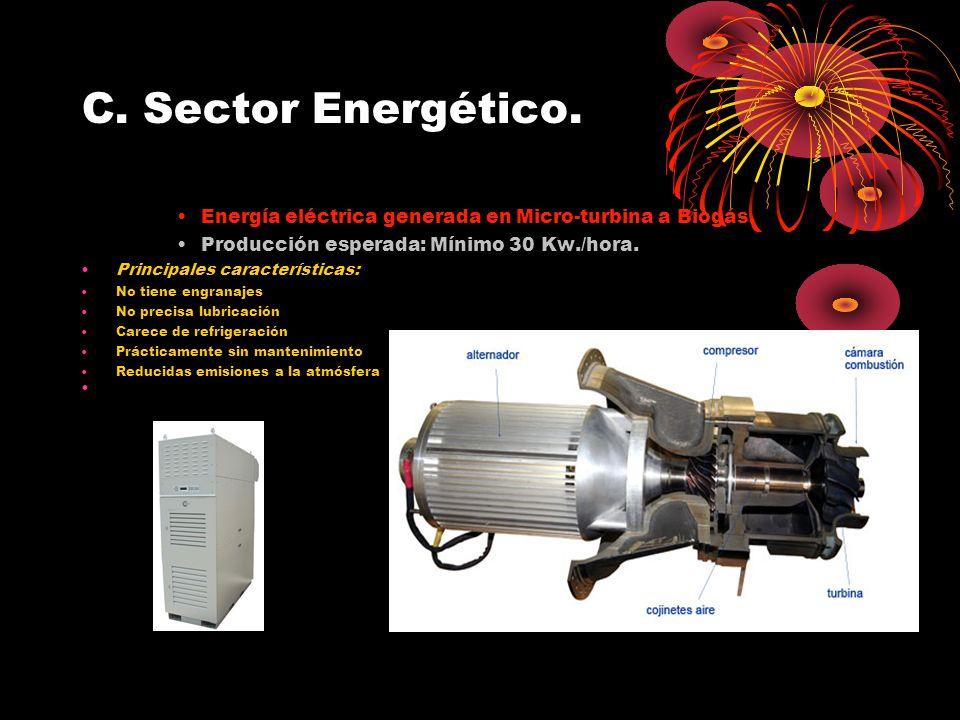 C. Sector Energético. Energía eléctrica generada en Micro-turbina a Biogás. Producción esperada: Mínimo 30 Kw./hora. Principales características: No t