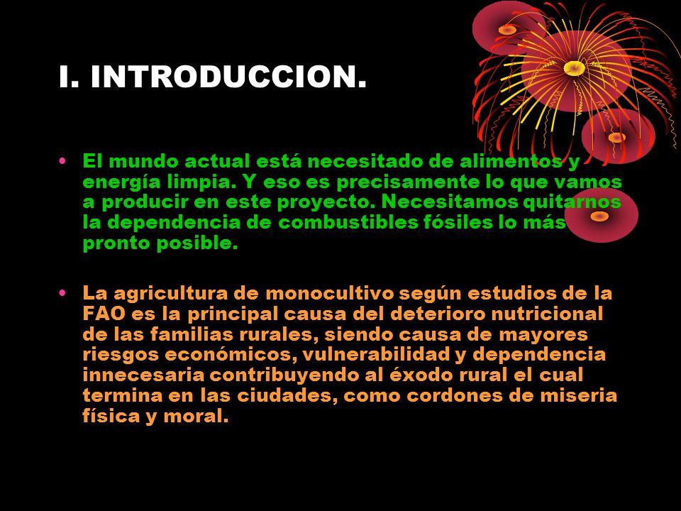 Cont.Producción, Sector Pecuario Caracol de Tierra (Helix aspersa).
