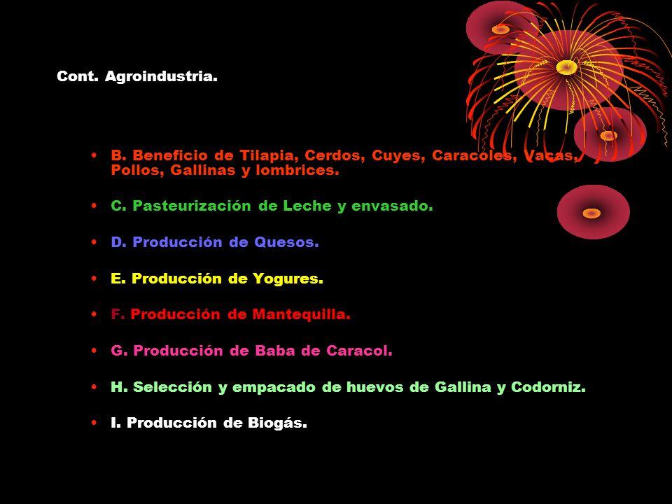 Cont. Agroindustria. B. Beneficio de Tilapia, Cerdos, Cuyes, Caracoles, Vacas, Pollos, Gallinas y lombrices. C. Pasteurización de Leche y envasado. D.