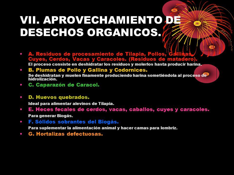VII. APROVECHAMIENTO DE DESECHOS ORGANICOS. A. Residuos de procesamiento de Tilapia, Pollos, Gallinas, Cuyes, Cerdos, Vacas y Caracoles. (Residuos de