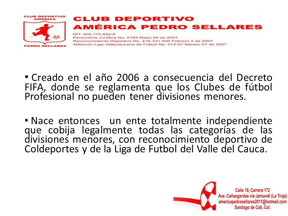Creado en el año 2006 a consecuencia del Decreto FIFA, donde se reglamenta que los Clubes de fútbol Profesional no pueden tener divisiones menores. Na
