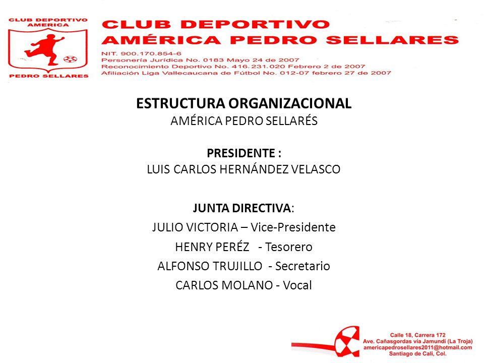 ESTRUCTURA ORGANIZACIONAL AMÉRICA PEDRO SELLARÉS PRESIDENTE : LUIS CARLOS HERNÁNDEZ VELASCO JUNTA DIRECTIVA: JULIO VICTORIA – Vice-Presidente HENRY PE