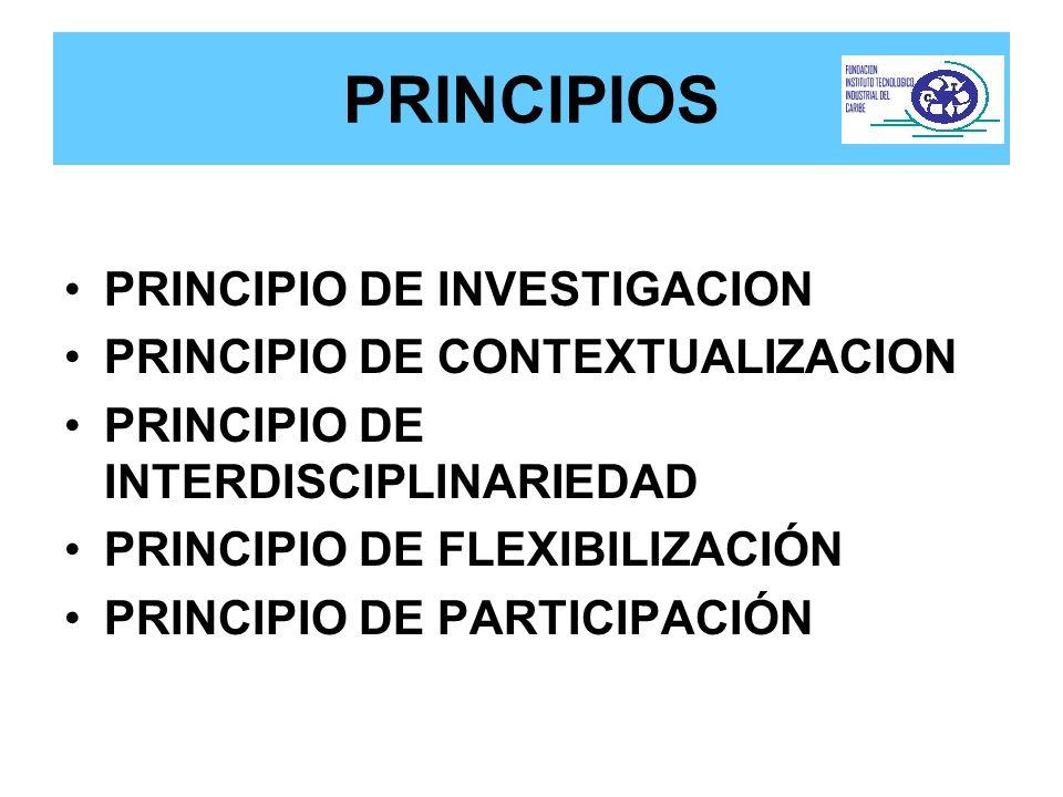 PRINCIPIOS PRINCIPIO DE INVESTIGACION PRINCIPIO DE CONTEXTUALIZACION PRINCIPIO DE INTERDISCIPLINARIEDAD PRINCIPIO DE FLEXIBILIZACIÓN PRINCIPIO DE PART